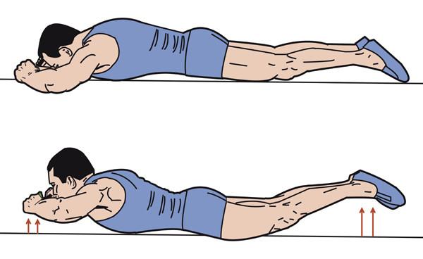 Ein Beispiel aus der neuen Trainingsanleitung für den Isokinator für Rücken, Po und Beine