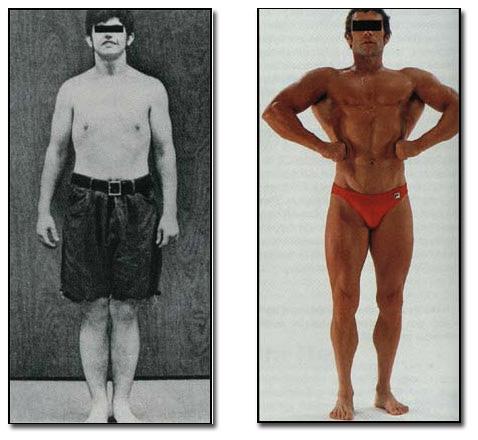 Warum eine Traum-Figur nur sieben Muskelgruppen braucht   Koelbel ...