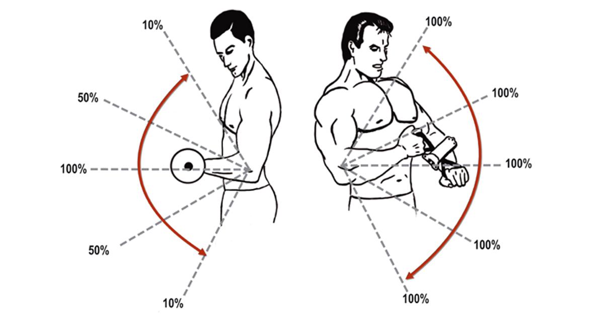 Isokinator-verbessert-Trainingstechnik