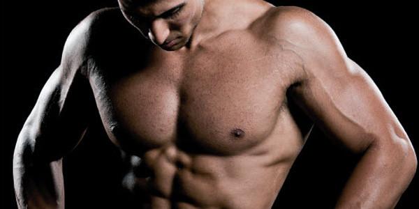 Brustkorb, Brustkasten oder Brustmuskeln - trainierbar mit dem Isokinator