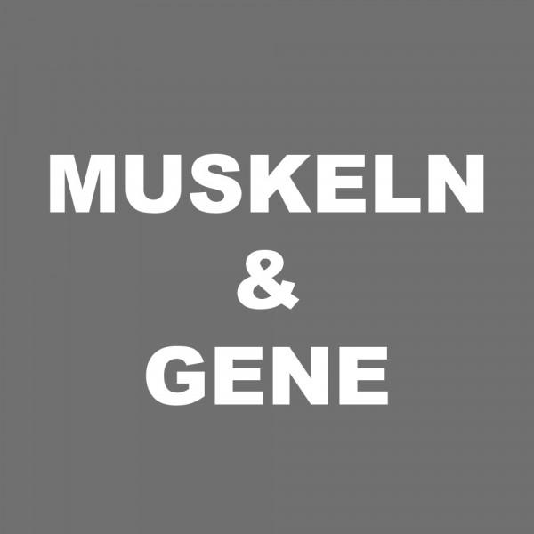 Antrainierte Muskulatur beeinflusst die Gene aller Nachkommen