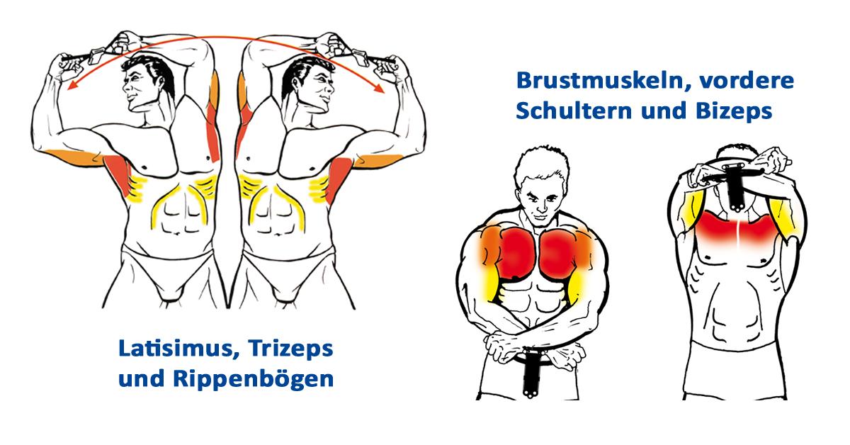 Isokinator-trainiert-auch-Hilfsmuskeln