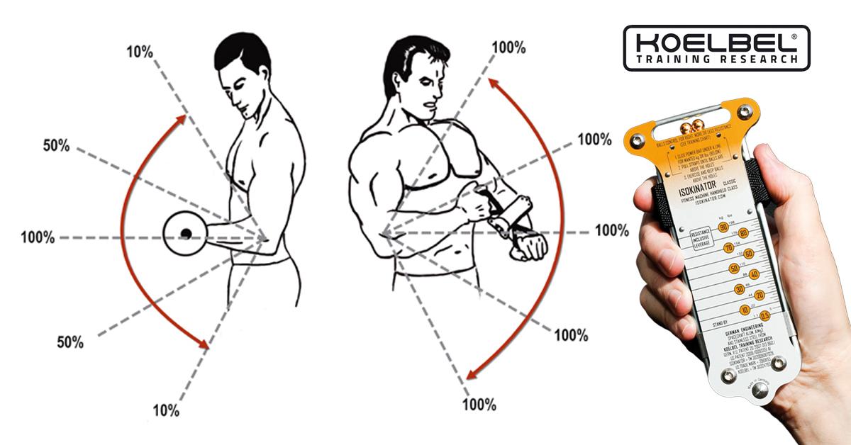 Hanteln oder Isokinator? Wodurch wächst der Muskel besser? | Koelbel ...