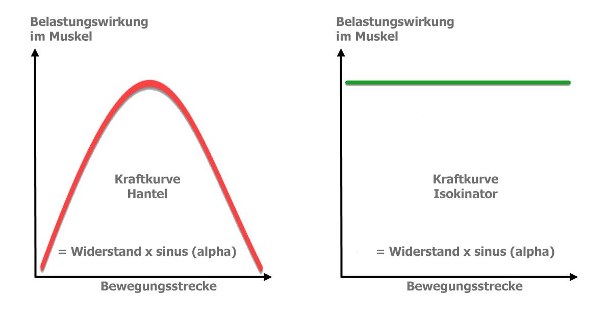 Kraftkurve-Hantel-Isokinator
